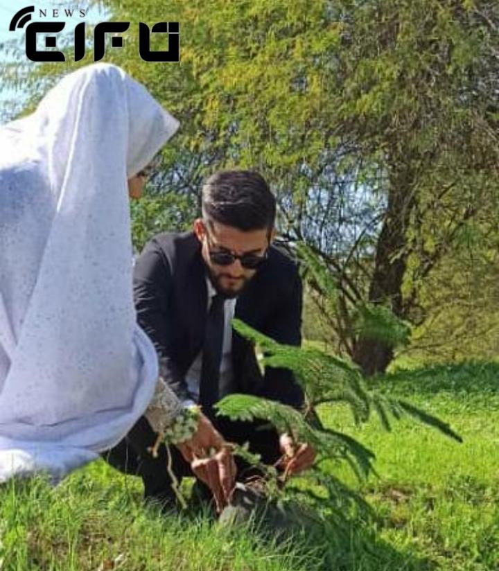 کاشت نهال به جای مراسم عروسی توسط زوج خوزستانی